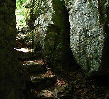 Aged Stone Stairs, Wolfsschlucht, Schwarzwald, Germany 2015 by J.D. Grubb