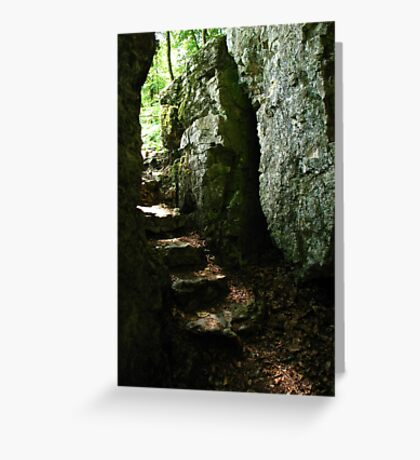Aged Stone Stairs, Wolfsschlucht, Schwarzwald, Germany 2015 Greeting Card