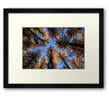 Heaven & Earth Framed Print