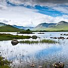 Rannoch Moor by James Grant