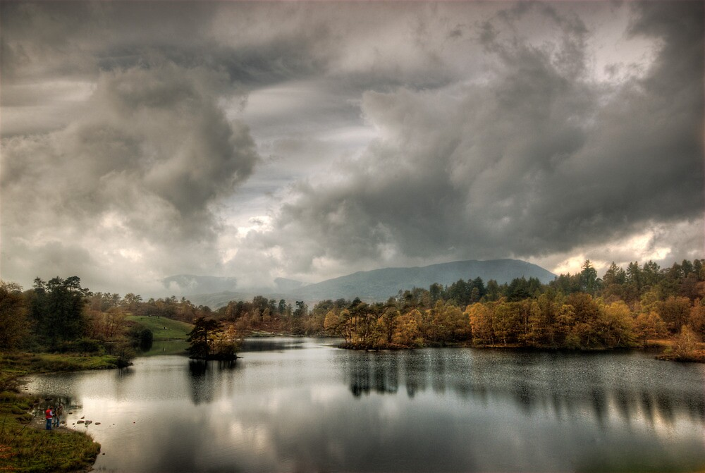 Afternoon light, Tarn Hows by Anna Shaw