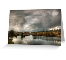 Afternoon light, Tarn Hows Greeting Card