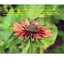 Matthew 11:28-30 Photographic Print