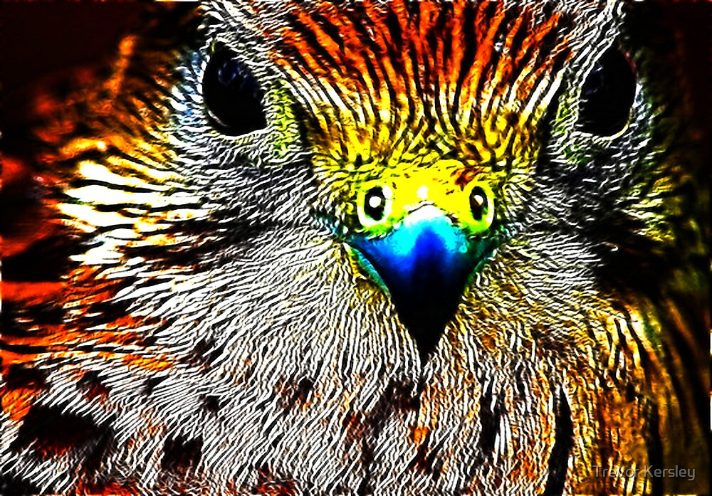 Fractual Eagle by Trevor Kersley