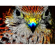 Fractual Eagle Photographic Print