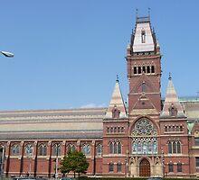 Memorial Hall, Harvard University by nealbarnett