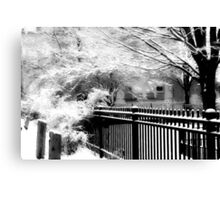 Dreamy Winter ©  Canvas Print