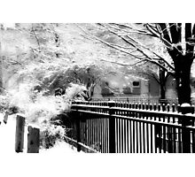 Dreamy Winter ©  Photographic Print