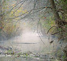 Foggy Creek by mountainshadows