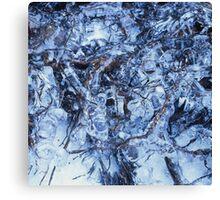 Ice sculpture 1 Canvas Print