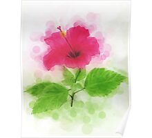 Hibiscus with Drops Poster