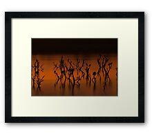 The Ponds Gabarone dusk Framed Print