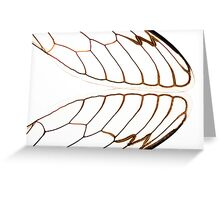 Cicada Wings Greeting Card