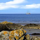 Ballywalter Schooner by oulgundog