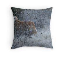 In The Early Morning Frost Throw Pillow
