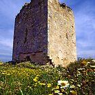 Eagle's tower (Torre del Aguila) by EllensEye