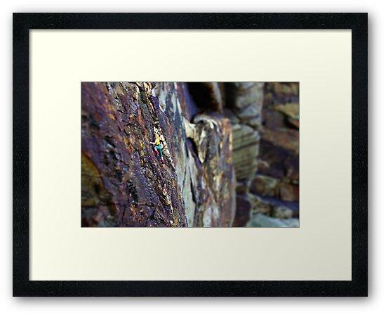 Rock Climber by Mark Wilson