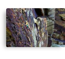 Rock Climber Canvas Print