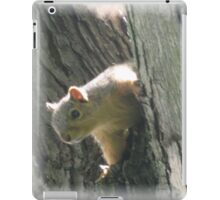 Ready or Nut, Here I Come iPad Case/Skin