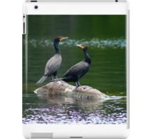 Two Double Crested Cormorants iPad Case/Skin