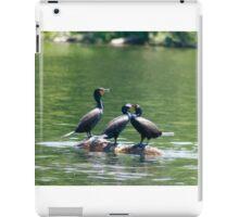 Three Double-crested Cormorants iPad Case/Skin