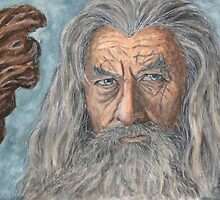 Gandalf the Grey by outofthedust