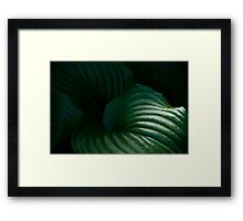 """""""A Touch of Tropical Green"""" Framed Print"""