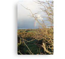 Rainbow on the moors Canvas Print