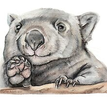 Lucy the Wombat by Meaghan Roberts