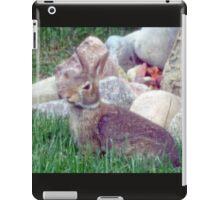 Front Yard Bunny iPad Case/Skin