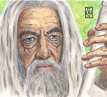 Gandalf the White by outofthedust