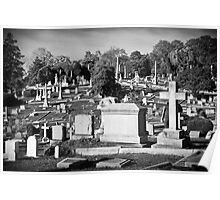 Hollywood Cemetery Poster