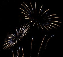 flower fireworks by Dean Messenger