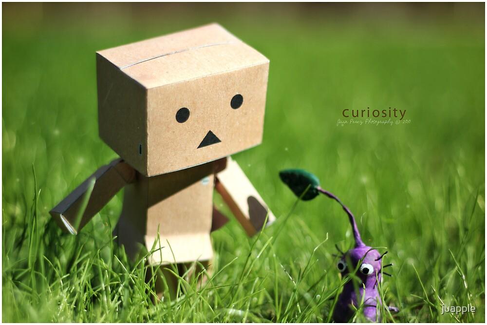 curiosity by juapple