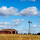 barn, windmill and happy! by kmax