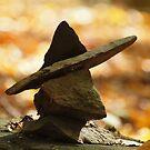 The Park Ranger by Melzo318