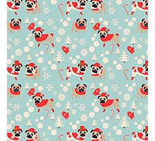 Snow Pugs on Light Blue Photographic Print
