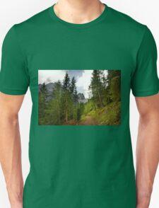View  Mountain  Ilm Spitze  T-Shirt