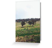 Green, Green Hills Greeting Card