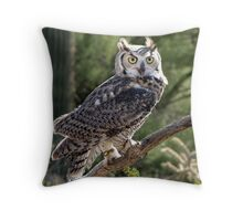 Great Horned Owl ~ Captive (6mos) Throw Pillow