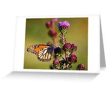 Flutter Bye,,,I Need More Flutter Byes Greeting Card