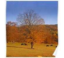 Golden Autumn ll Poster