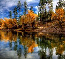 Fall Slice by Bob Larson