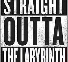 Straight Outta the Labyrinth by xalygatorx