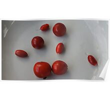 Miracle Fruit seeds & Cedar Bay Cherries Poster
