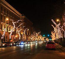 Budapest by night by zumi
