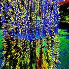 """Stained Glass by David """"Oz""""  Osterczy"""