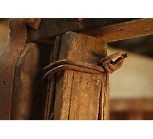 Rusted Wire Photographic Print