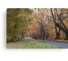 Morning Ride Canvas Print