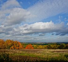 Shades of Autumn by taffspoon